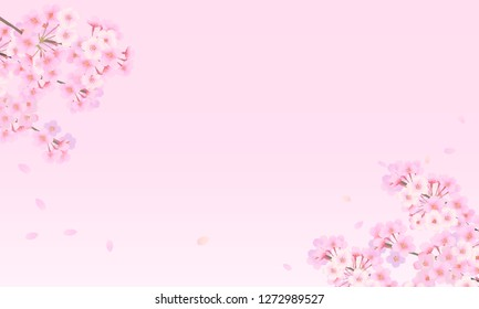 Pale-colored cherry background material 02