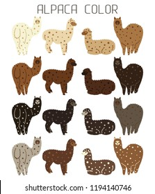 Palette of natural colors of Alpaca wool. Animal from Peru. For manufacturers and sellers of wool, yarn, fabrics, blankets and clothing from alpaca. Cartoon style