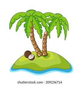 Palm and coconut on the island on a white background
