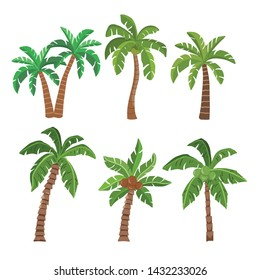 Palm  and coconut trees isolated on white background. tree summer beach collection. vector illustration