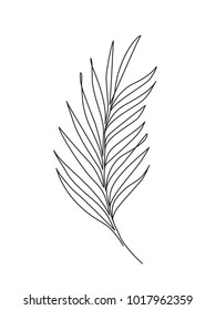 Palm leaf line art. Contour drawing. Minimalism art. Modern decor.