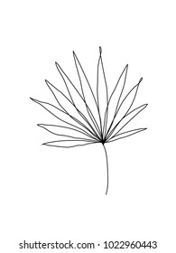 Palm leaf line art. Contour drawing. Minimalism art. Modern decor.