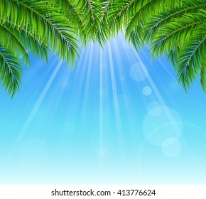 Palm leaf on blue sky with bright sun