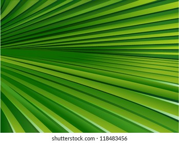 Palm Leaf Pattern 2