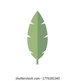 Palm Leaf Plant, Palm Tree Leaf Icon Vector Illustration Background