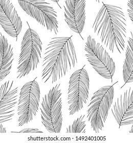 Palm leaves black ink vector seamless pattern. Exotic tree foliage on white background. Tropical flora leafage textile print. Lightweight feathers, floating plumage fabric, wallpaper design