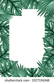 Palm leaves frame background. Tropical greeting card. - Vector