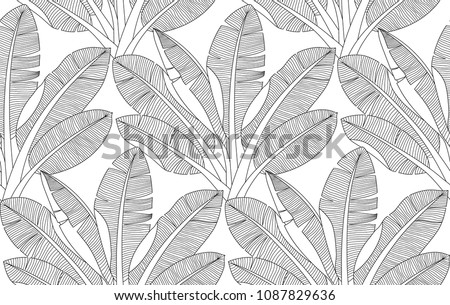 Palm Leaves Pattern Adult Zentangle Coloring Stock Vector Royalty