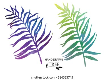 Palm leaves . Set of vector images . Drawing by hand .