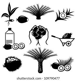 Palm oil icons set