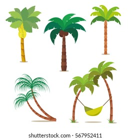 Palm set. Tropical trees for your design or project. Isolated on white background. Vector, illustration EPS10.