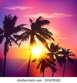 Palm silhouettes on summer sunset