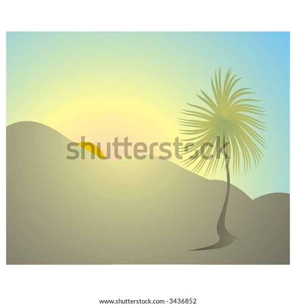 Palm tree in downs