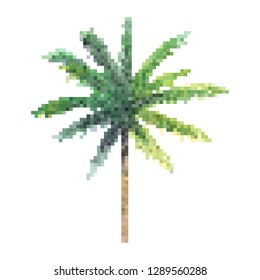 palm tree pixel art vector, isolated natural plant on white background