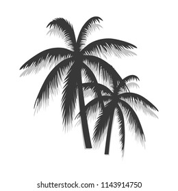 Palm tree poster isolated on white background. Modern summer backdrop for web site, wallpaper, placard and ad. Useful for cover, banner and print materials. Creative art concept, vector illustration