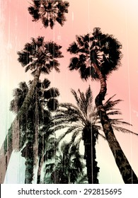 Palm tree print in vector