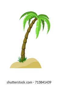 Palm Tree in the sand with shadows
