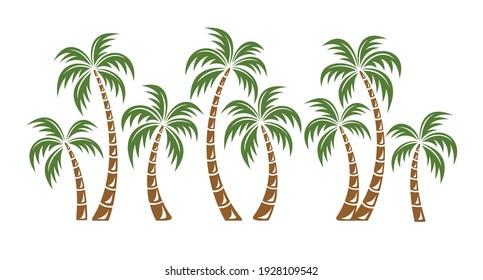 Palm trees isolated on white background. Beautiful vectro palma tree set vector illustration - Vector