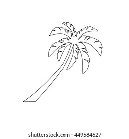 palm trees outline vector