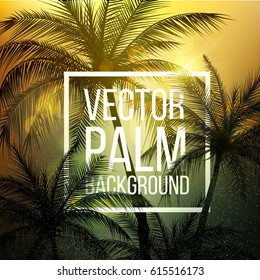 Palm Trees.Vintage toned palm trees.Palm background. Vector illustration.EPS10
