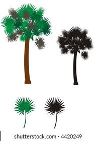 Palmetto tree, single leaf and silhouette, vector without gradients