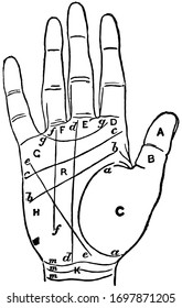 Palmistry is the art which professes to discover the temperament, vintage line drawing or engraving illustration.