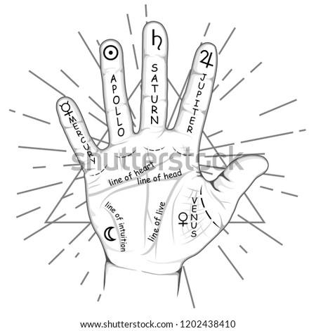 Стоковая векторная графика «Palmistry Chiromancy Hand Signs
