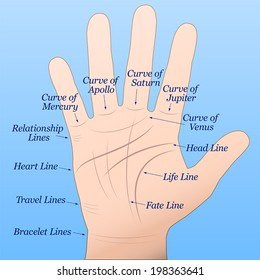 Palmistry - Right hand with lines and their names. Vector illustration on blue gradient background.