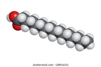 Palmitic acid (palm oil) molecule space fill model - C16H32O