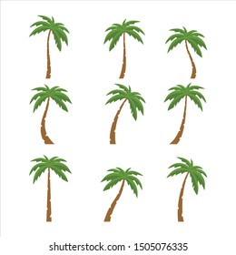 Palms tree icons with color on white background
