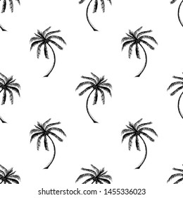 Palms tree seamless pattern on white background. Palm made in the form of a sketch.