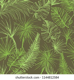 Palmtrees Seamless Pattern. Green coconut or queen palm trees with leaves. Beach and rainforest, desert coco flora. Foliage of subtropical fern. Green palmae or jungle arecaceae. Fashion Botany