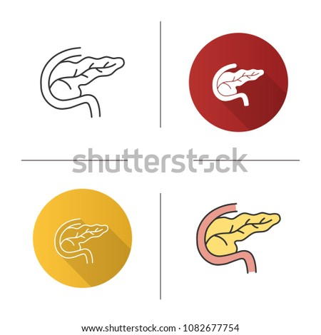 Pancreas Duodenum Icon Digestive Endocrine Gland Stock Vector ...