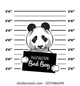 Panda criminal. Police banner. Arrest photo. Police placard, Police mugshot, lineup. Police department banner. Bear offender. Panda bear Vector illustration