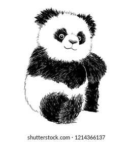 Panda isolated on a white background. Vector hand drawn  illustration