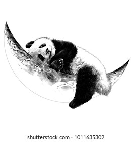 Panda lying on the Crescent moon sketch vector graphics monochrome drawing