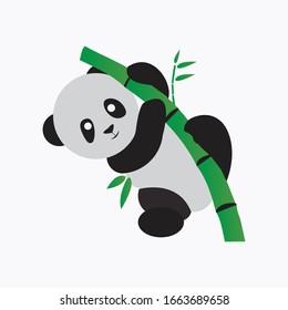 A panda playing with Bamboo