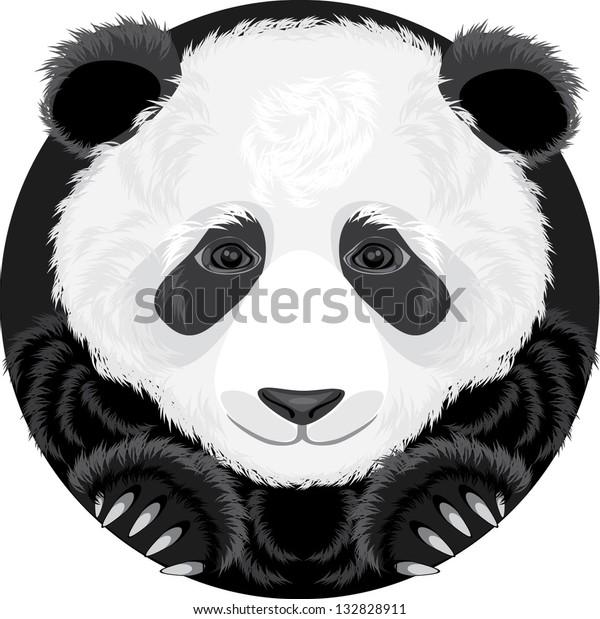 panda-vector-600w-132828911.jpg