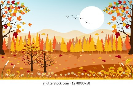 Panorama landscape of Countryside landscape in autumn, Vector illustration panoramic of horizontal banner of autumn landscape mountains and maple trees fallen with yellow foliage.
