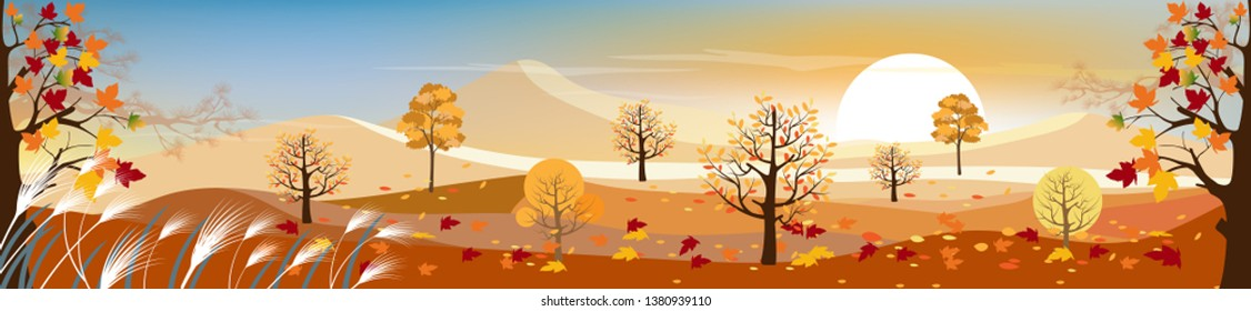 Panorama landscape of Countryside with sunny day in autumn, Panoramic of mid autumn with farm field, mountains, wild grass and maple leaves falling from trees