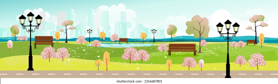 Panorama landscape of public park with bench and cherry flowers blossom in park, Cityscape background, Panoramic Urban landscape of summer or spring with blurry buildings background.