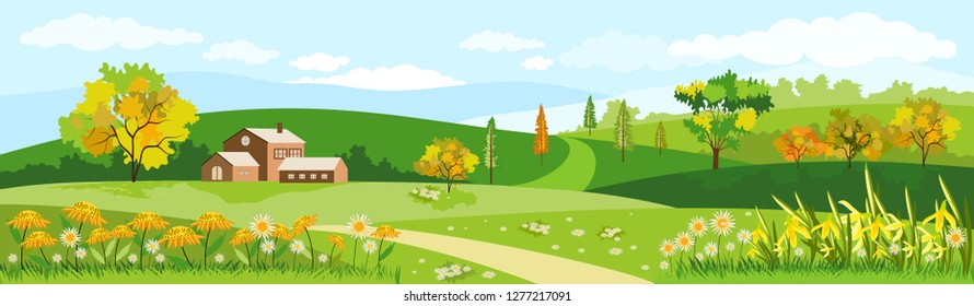 Panorama view of spring village with flowers and green meadow on hills with blue sky, Vector Summer or Spring landscape of countryside, Panoramic landscape summer field and farmhouse.