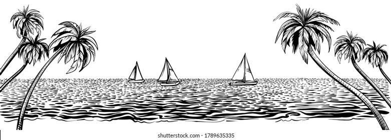 Panoramic beach with yachts regatta. Vector tropical resort illustration with palms, ocean or sea water. Black line sketch isolated on white background.