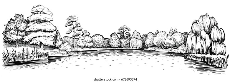 Panoramic landscape with trees and lake, vector hand drawn illustration. Deciduous forest and water reflection.