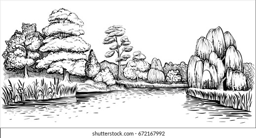 Panoramic landscape with trees and river, vector hand drawn illustration. Riverside with forest and water reflection, reed and cattail.