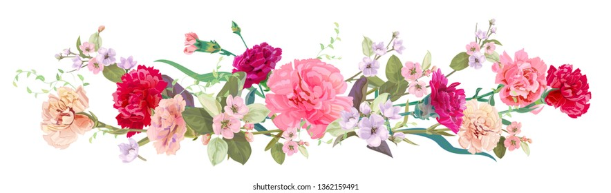 Panoramic view: bouquet of carnation schabaud, spring blossom. Horizontal border: red, pink flowers, buds, leaves on white background. Digital draw illustration in watercolor style, vintage, vector