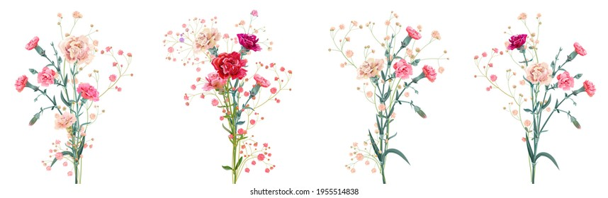 Panoramic view with carnation. Set red, pink, white flowers, gypsophile twigs, white background, collection for Mother's Day, Victory Day, digital draw, vintage illustration, vector, watercolor style