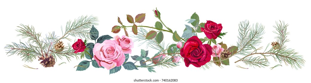 Panoramic view with red, pink roses, pine branches and cones, needles. Horizontal border for Christmas: flowers, buds, leaves on white background, digital draw illustration, watercolor style, vector
