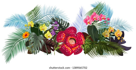 Panoramic view with tropical plants: Rafflesia arnoldii, Dendrobium, red, yellow Phalaenopsis orchid flowers, gerbera, monstera, coconut palm leaves. Illustration in watercolor style, vintage, vector