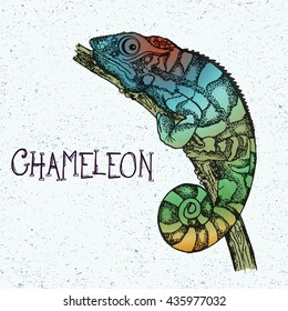 Panther Chameleon. Hand-drawn illustration of cartoon rainbow colored lizard in dot art style. Tattoo design, textiles print. Vector editable sketch isolated on vintage background